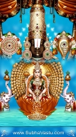 Tirupathi Balaji Mobile Wallpapers_1482