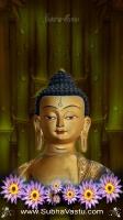 Buddha Mobile Wallpapers_303