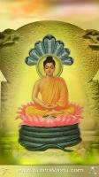 Buddha Mobile Wallpapers_307