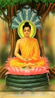 Lord Buddha Mobile Wallpapers_273