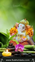 Ganesha Mobile Wallpapers_1311