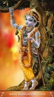 Krishna Mobile Wallpapers_1200