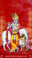 Krishna Mobile Wallpapers_1205