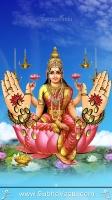 Lakshmi Mobile Wallpapers_151