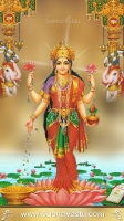 Lakshmi Mobile Wallpapers_232