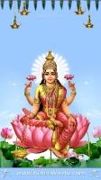 Lakshmi Mobile Wallpapers_940
