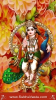 Lord Subramanya Mobile Wallpapers_571