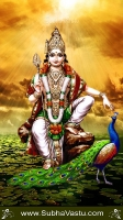 Murugan Mobile Wallpaper_458