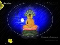 1024X768-Buddha_14