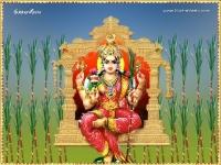 Gayathri-1024X768_45
