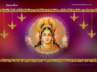 1024X768-Lakshmi Wallpapers_351