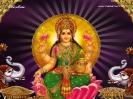 1024X768-Lakshmi Wallpapers_647